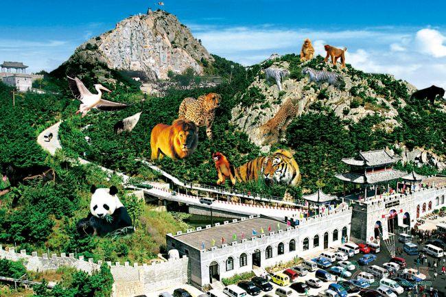 5月19日威海神雕山野生动物园一日游召集