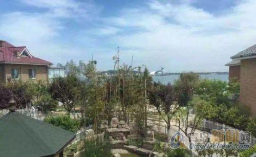 (出售五四广场 明珠花园 沿海独栋别墅 带院子 带池塘