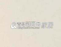 东鹏地面玻化砖缤纷石系列G800080