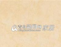 东鹏YF601925_A地面玻化砖