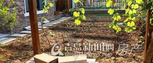 银盛泰德郡,联排别墅,庭院实景图,青岛新闻网房产