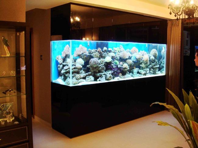 海洋生态水族简约系列
