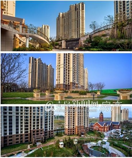 世茂,公园美地,实景图,青岛新闻网房产