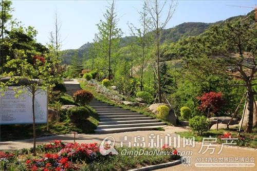 青岛世园会景色美丽诱人 玫瑰庭院坐享利好