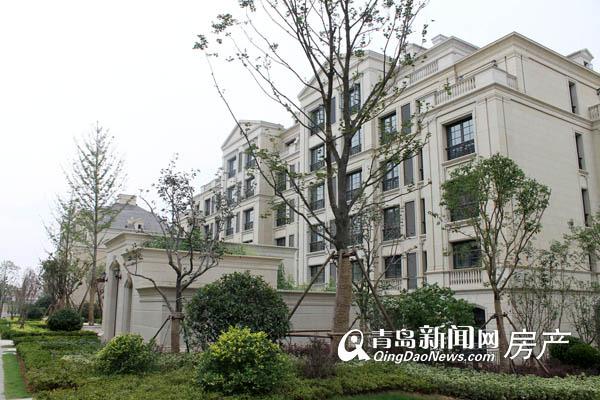 映月公馆珑台,现房,洋房,东李村,青岛新闻网