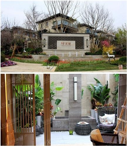 中欧国际城金茂墅,高新区别墅,青岛新闻网房产