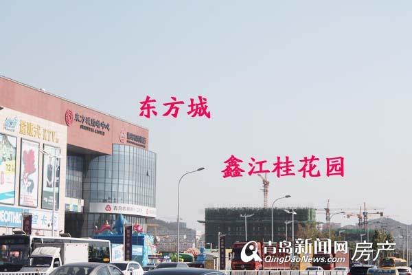 鑫江桂花园,小高层,东方城,青岛新闻网