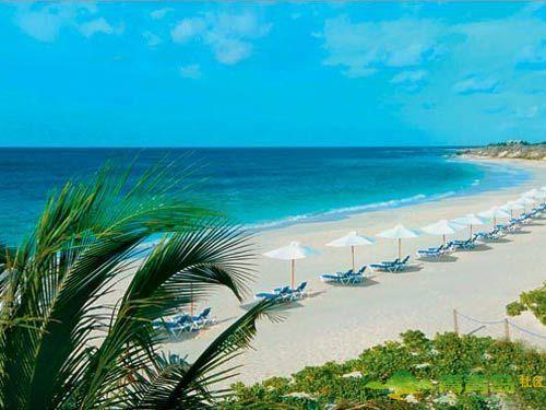 夏威夷a酒店推荐酒店海洋婚礼度假地-青青岛社胜地攻略五星图片