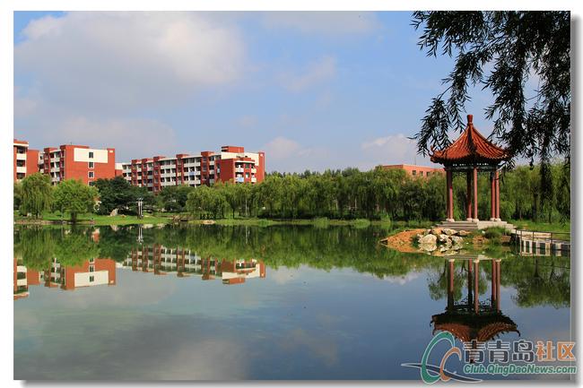 山东科技大学校园风光 2 砚湖
