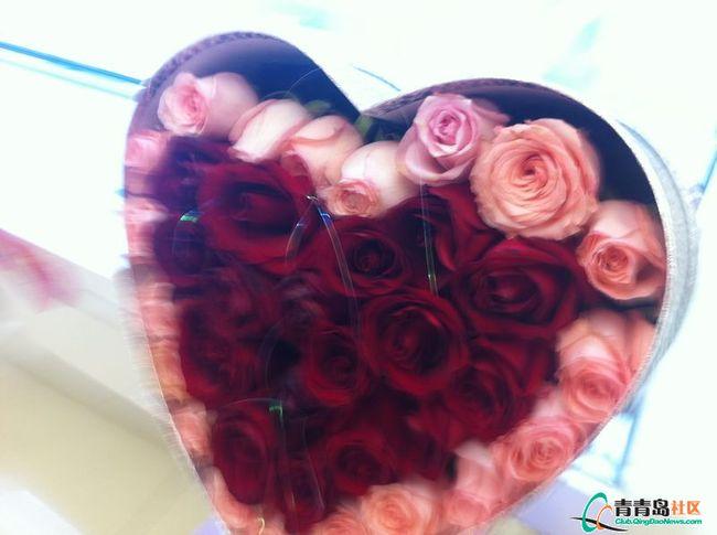 实拍今年情人节的玫瑰花 总体而言不景气 组图