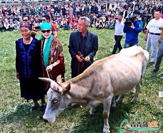 台湾姑娘嫁给新疆哈萨克族视频牧民异族婚礼番茄虾图片