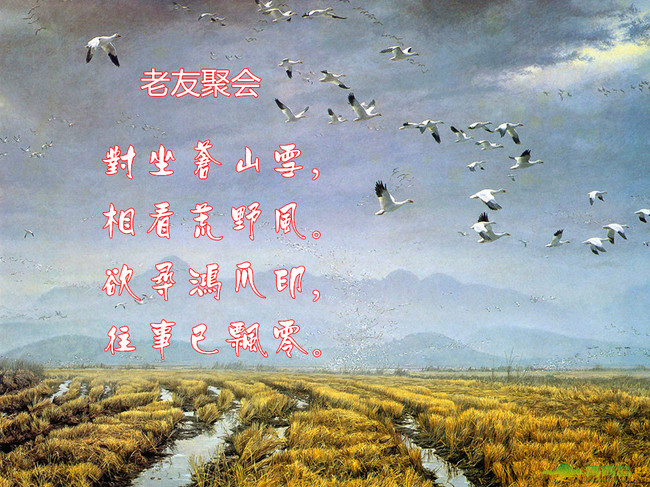 形容青藏高原的古诗句