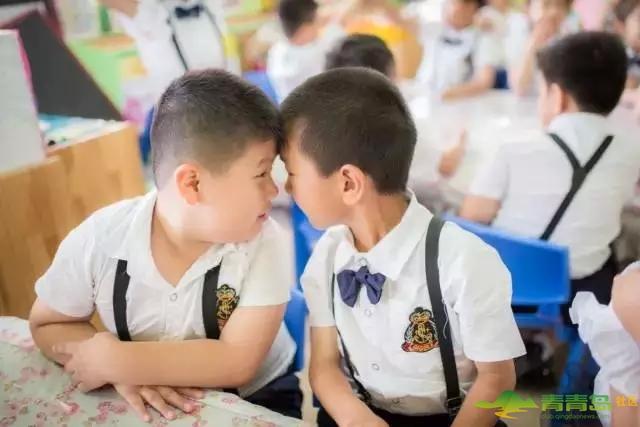 再见我们的幼儿园 史上最萌毕业集体照-青青岛社区图