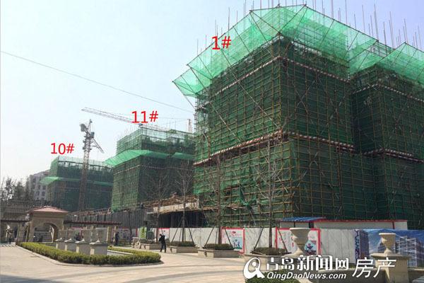 东李,新盘,河岸首府,小高层,工程进展,青岛新闻网