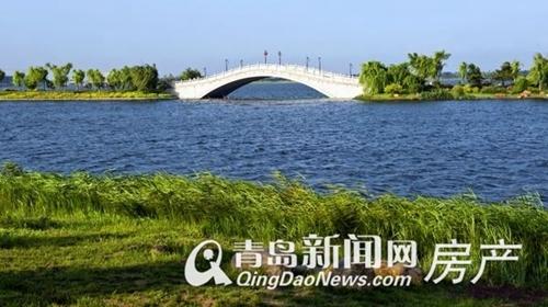 三木,三木家天下,三木集团,青岛新闻网