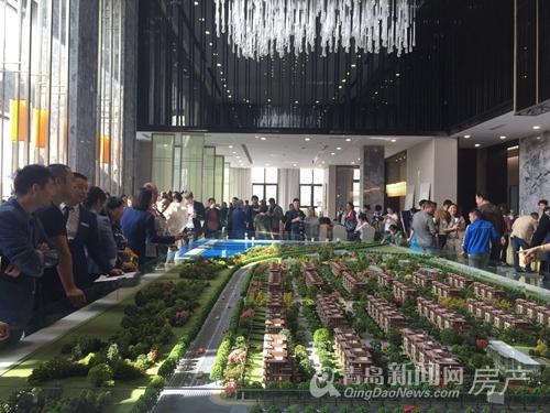 鲁昊,鲁昊棠琳湾,青岛新闻网