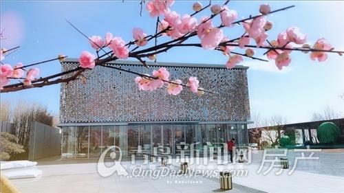 星雨华府,中欧国际城,珊瑚湾,高新区,青岛新闻网