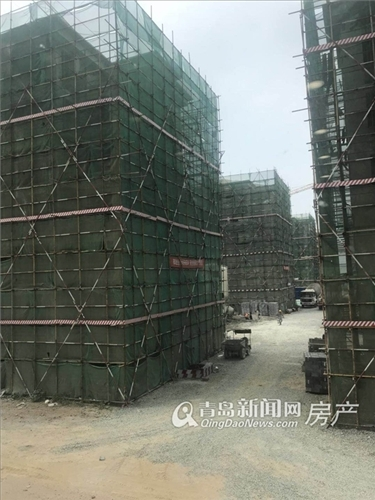 龙悦湾,海阳,海景房,青岛新闻网房产
