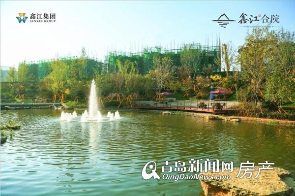 城阳鑫江合院135