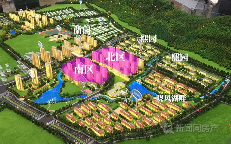 绿城海棠印月,东李,2019,新盘,户型图发布,青岛新闻网