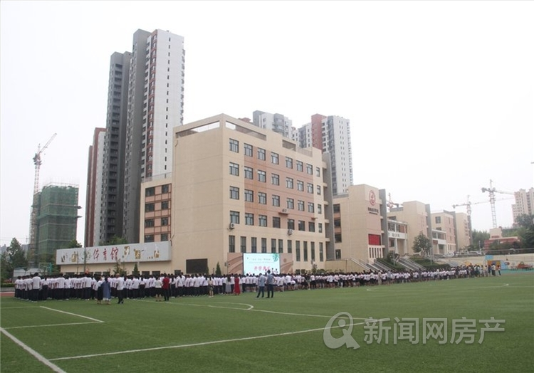 碧桂园云境,市北,新盘,青岛新闻网