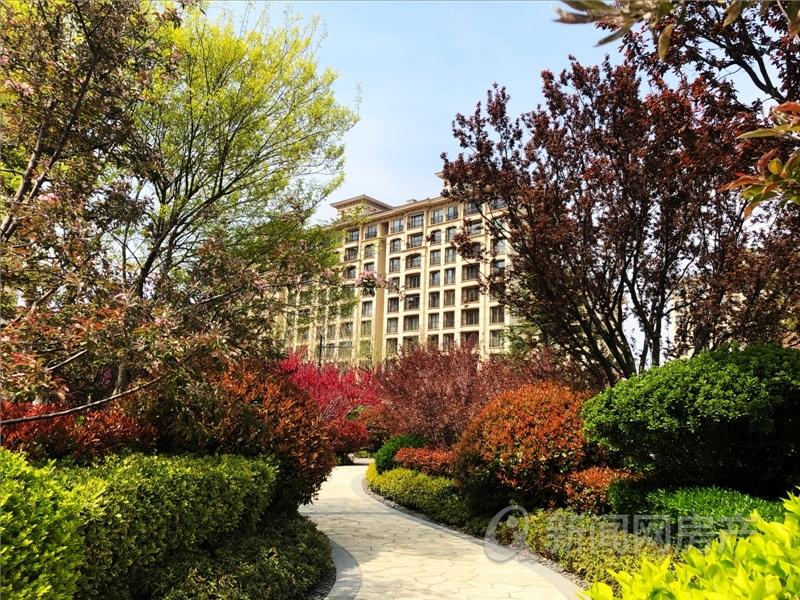 鲁信和璧花园,即墨,青岛新闻网