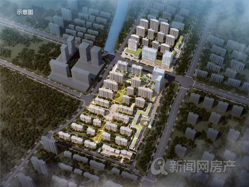 李沧,纯新盘,佳源双子星城,芒果,青岛新闻网