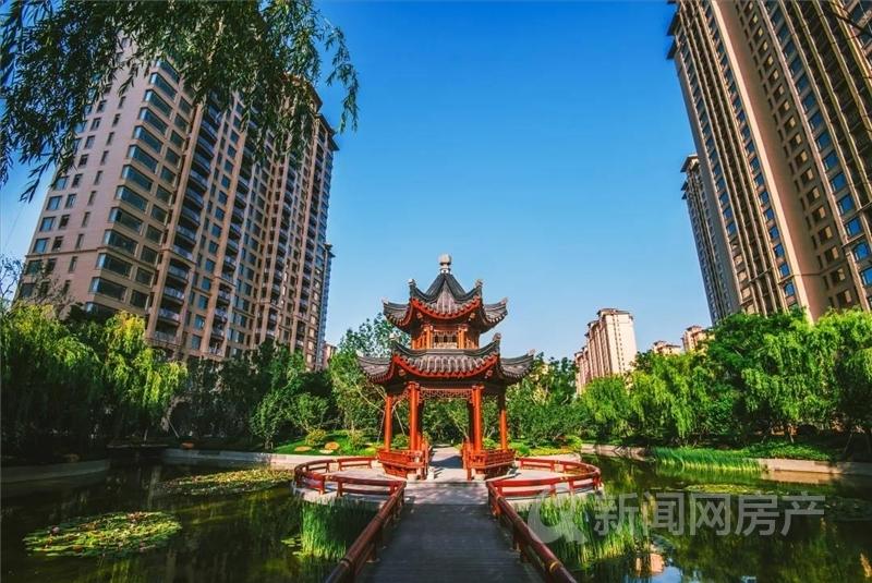 星河湾,城阳,海景房,青岛新闻网