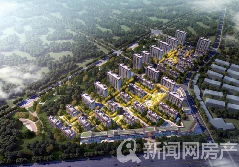 青岛,城阳,北京城建国誉府,青岛新闻网