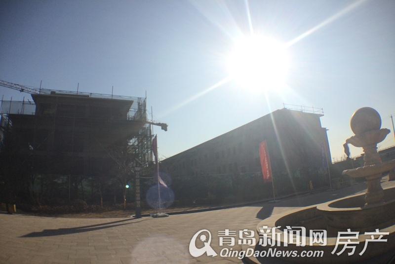 枫林小镇工程实景图2017.3.8-楼盘相册-大图展示
