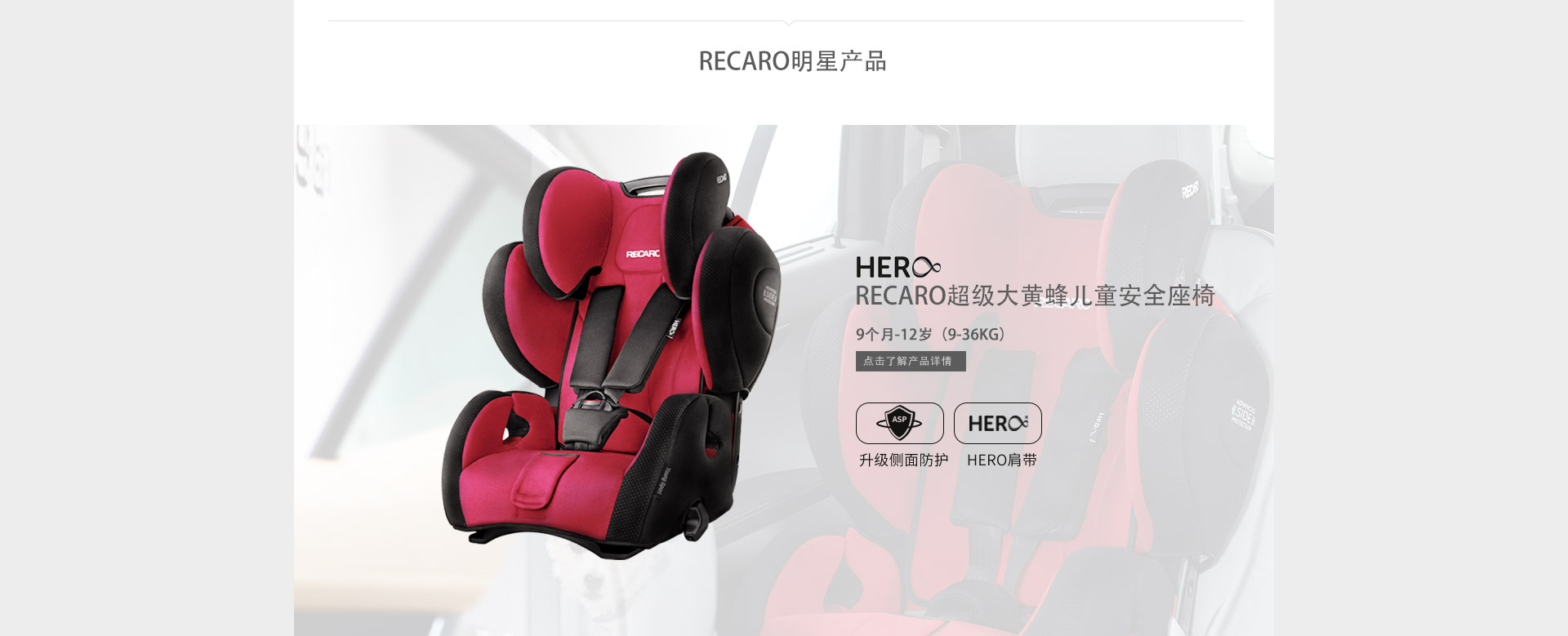 RECARO超级大黄蜂安全坐椅